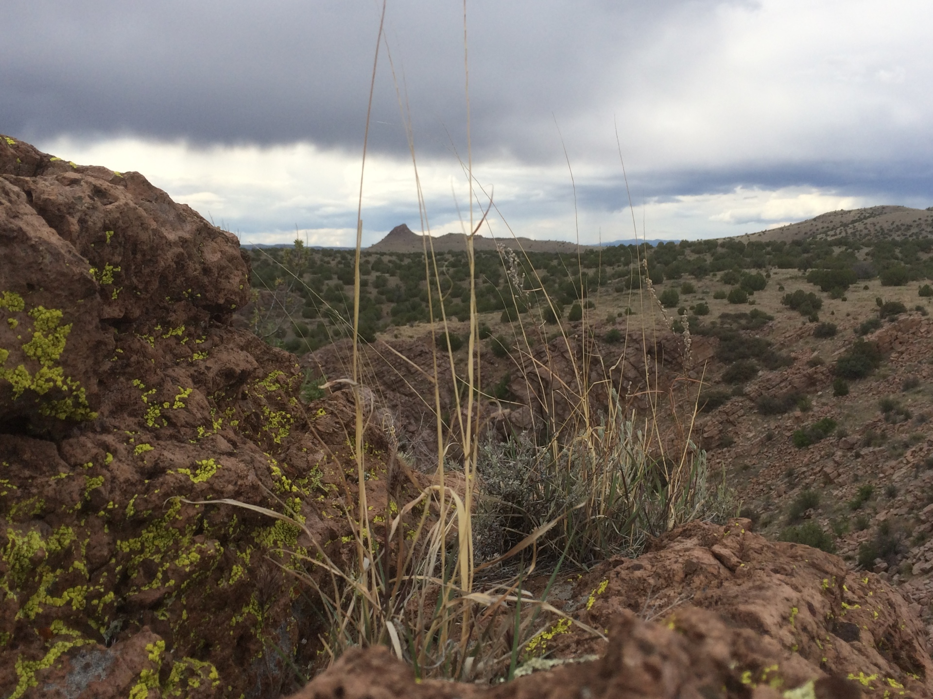 Granite Creek, Arizona Backpacking