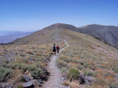 Wildrose Peak Trail, Death Valley