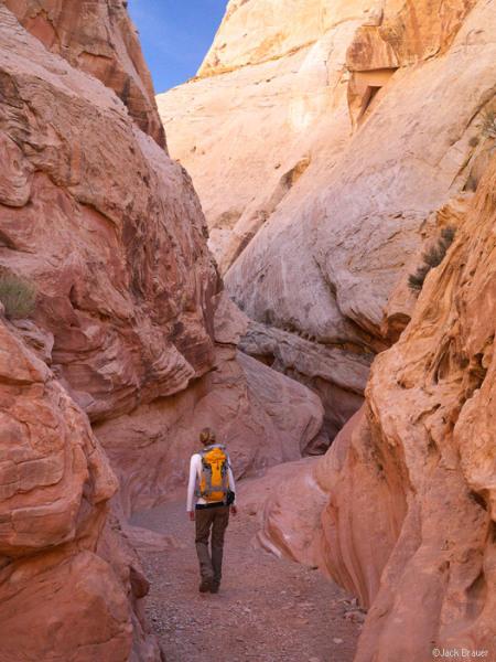 utah hiking and backpacking