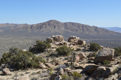 New York Mountains, Mojave National Preserve