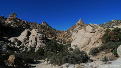 New York Mountains, Mojave National Preserve