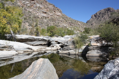 Hutches Pool Trail, Sabino Canyon Wilderness