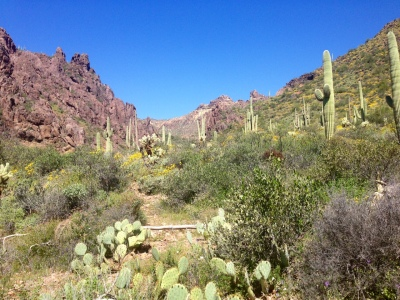 Haunted Canyon, Superstition Mountains