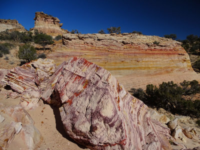 White Pocket, Vermillion Cliffs