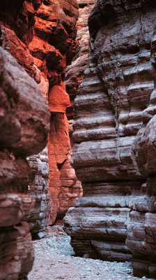 Tuckup Canyon Narrows, Grand Canyon