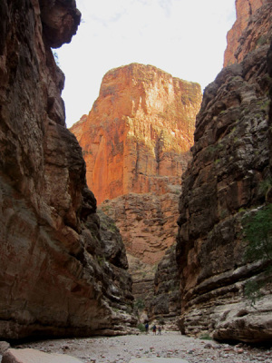 Stairway Canyon narrows. Grand Canyon