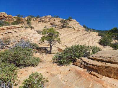 bear mountain sedona hiking