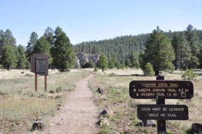 walnut canyon flagstaff hiking