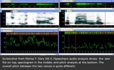 Pitch detector SIS II