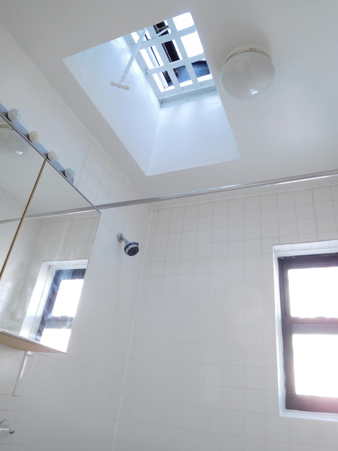 Bathroom with Rooflight Window