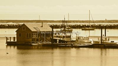 Provincetown Harbor - 1