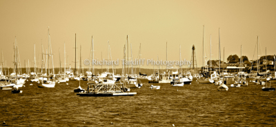 Marblehead Neck - Sepia
