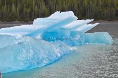 The Iceberg 1