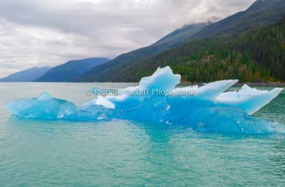 The Iceberg 2