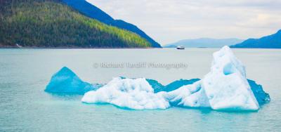 The Iceberg 3