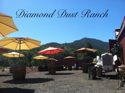 Diamond Dust Ranch Hopland, best venue Hopland, wedding reception Hopland, barn wedding Hopland,