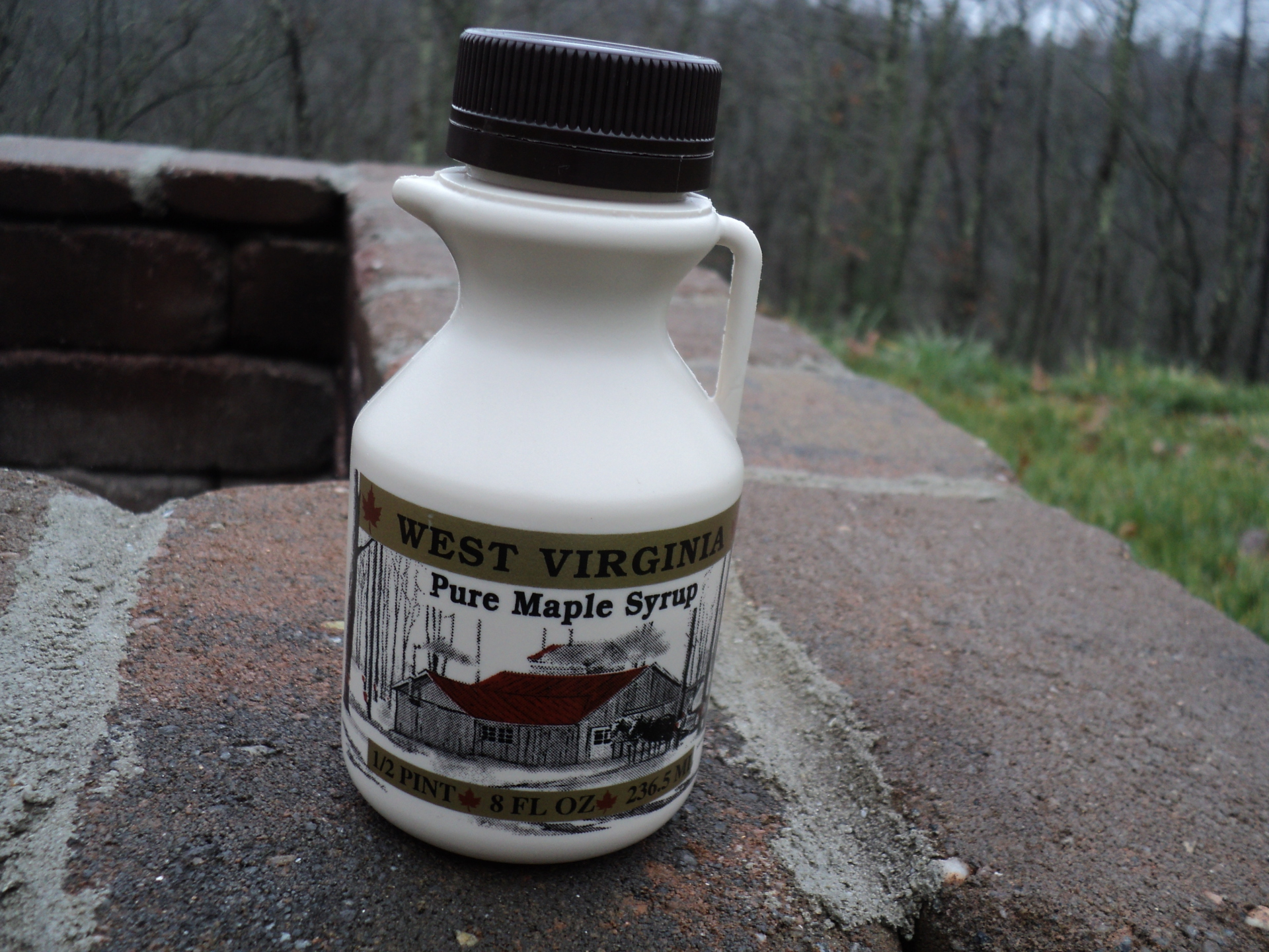 1/2 Pint Pure WV Maple Syrup