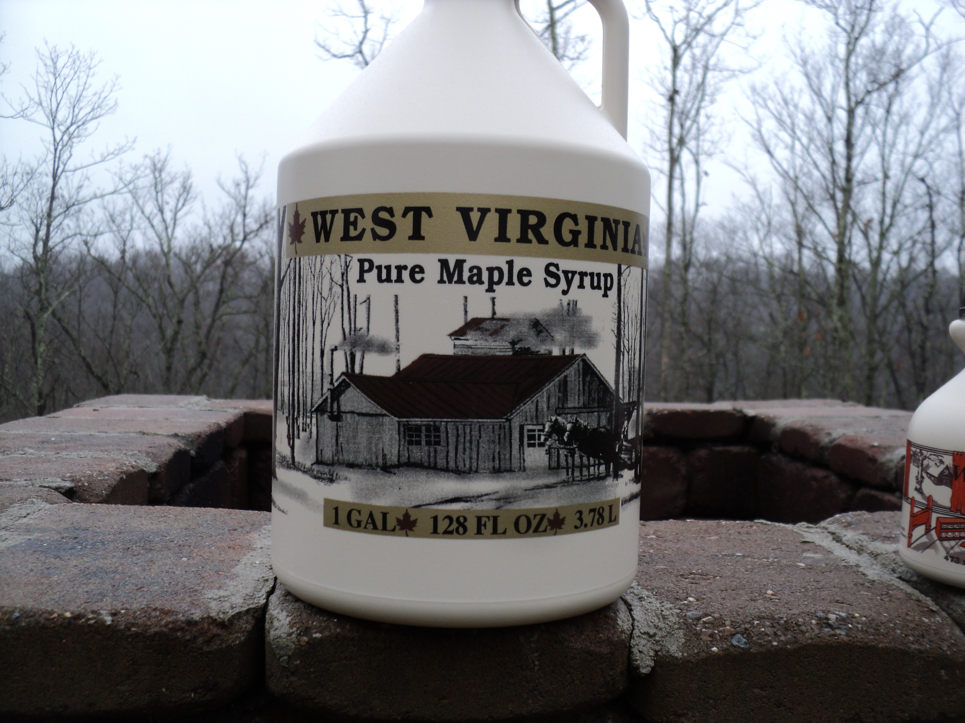 1 Gallon Pure WV Maple Syrup