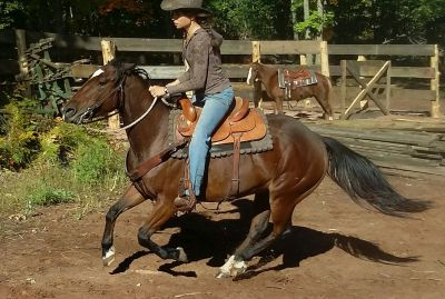 Smart little QH