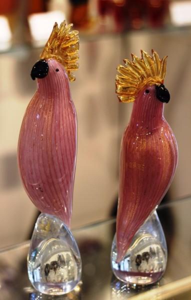 Pink Parrots