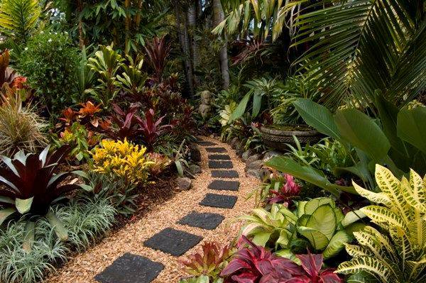 Tropical Plant Garden