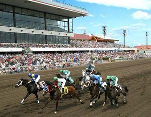 May - Sept.  Canterbury Horse Racing