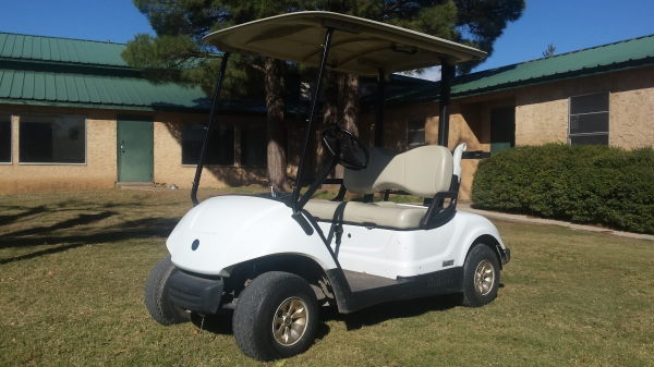 2013 Fuel Injected fleet cart, $3495