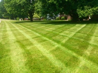 lawn maintenance services Evansville nd Newburgh Indiana