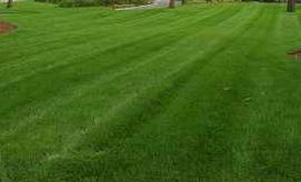Commercial lawncare mowing and fertilizing services Evansville and Newburgh Indiana