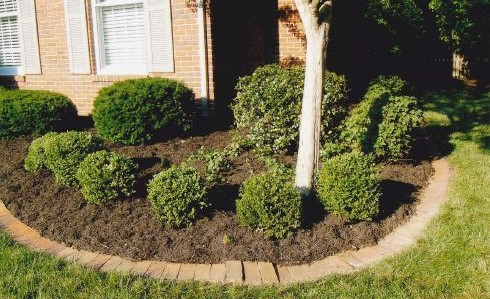 bush trimming and mulching services Evansville