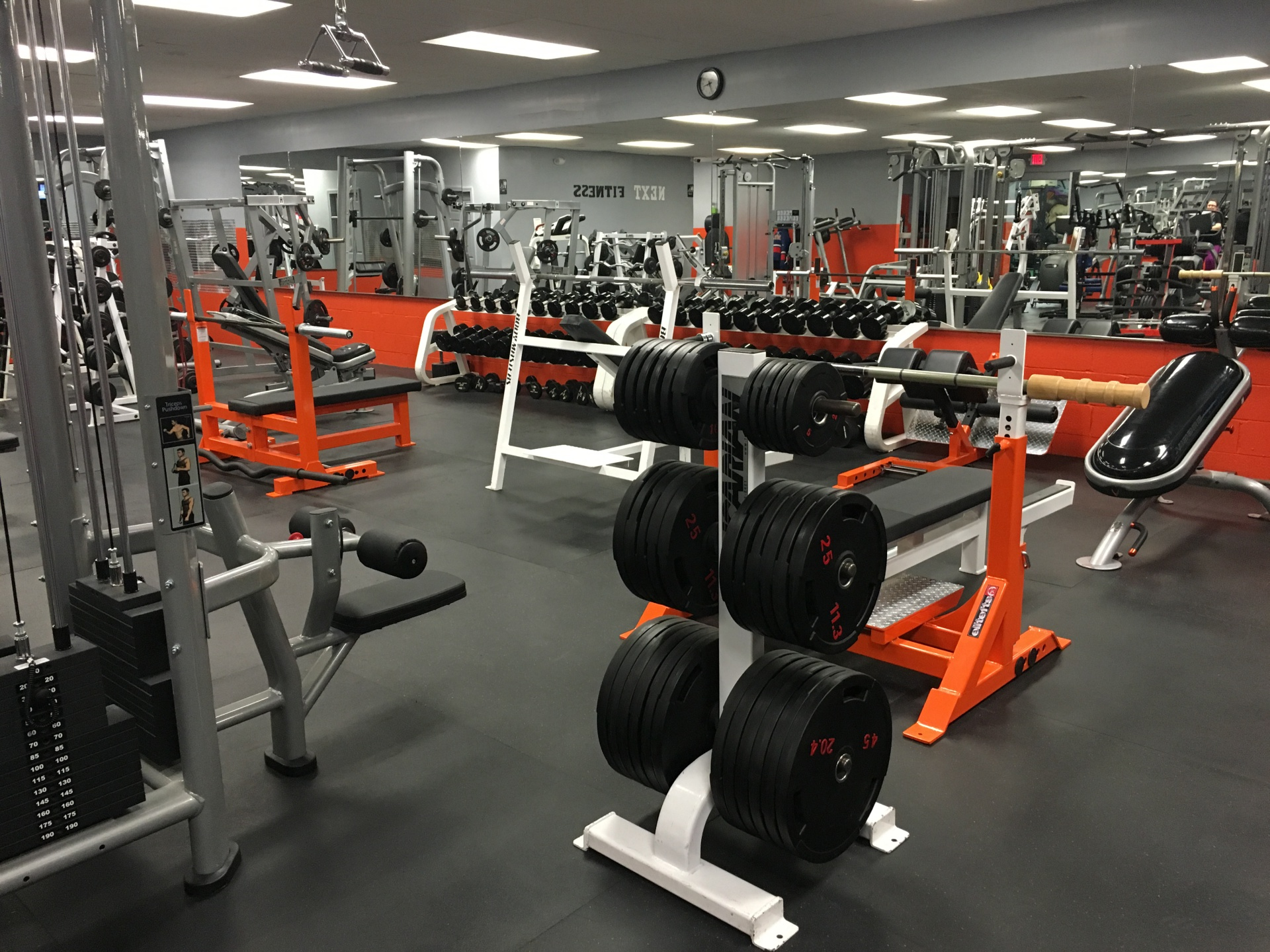 Fitness, Weights, Gym, Lifting, Agawam, Feeding Hills