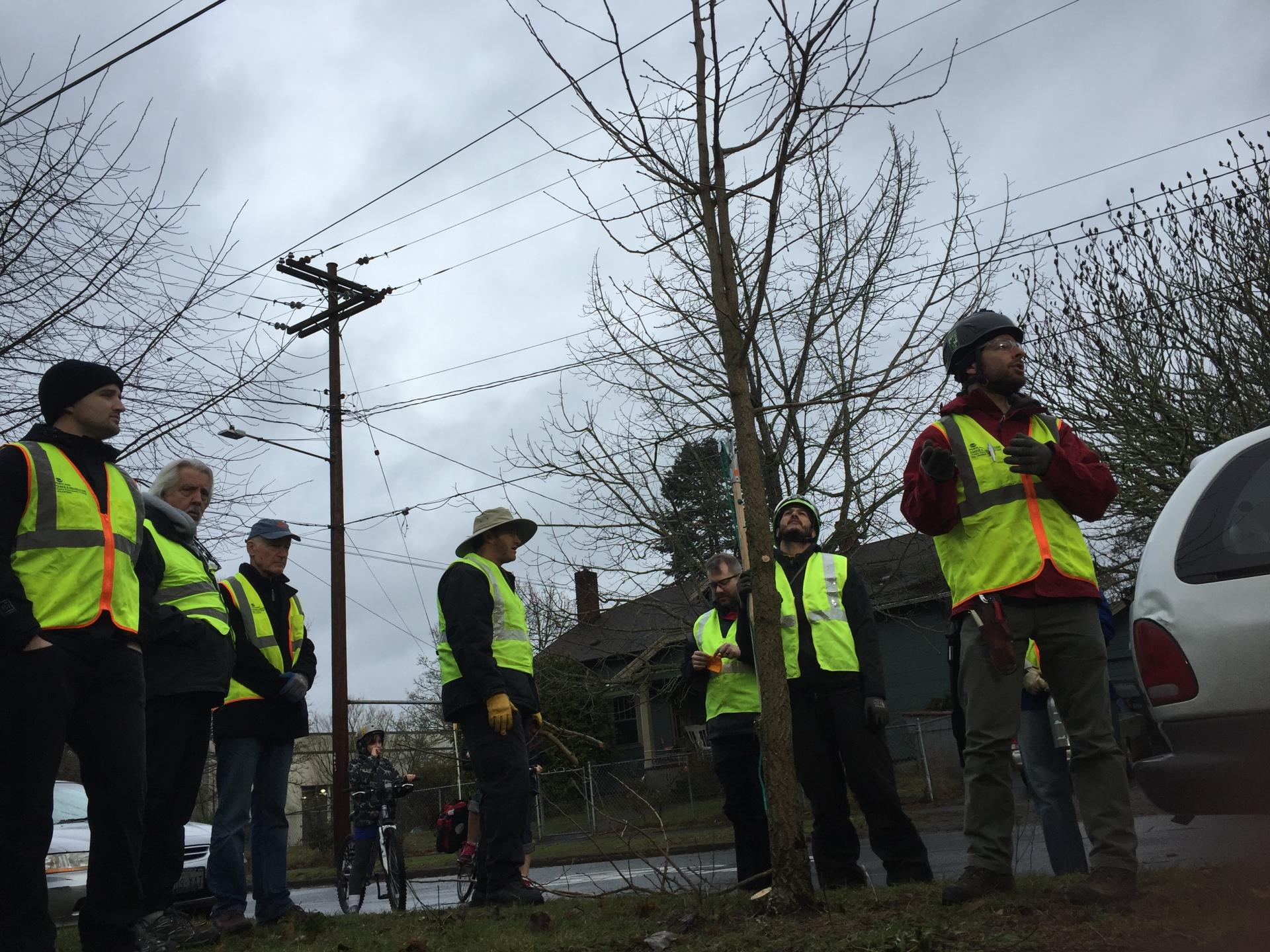 Volunteers Take Advantage of a Break in the Rain