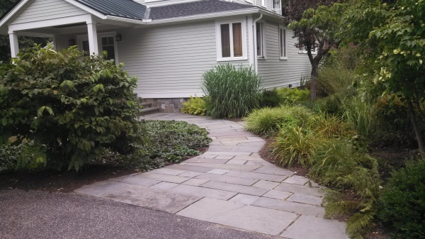Natural cleft-cut bluestone walkway