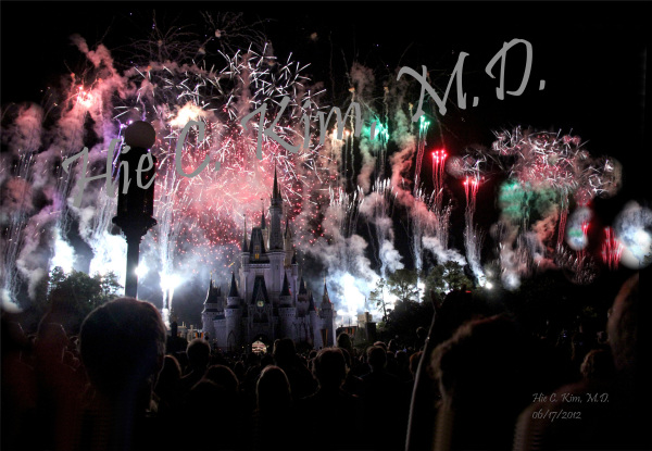 Disney World (2)