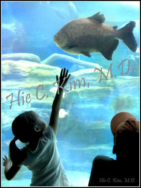 Me And A Big Fish