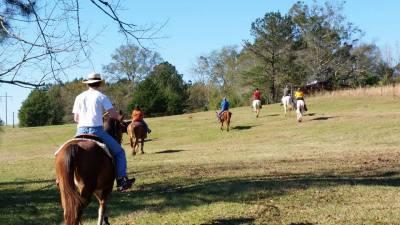 Summer Horse Camp 2017