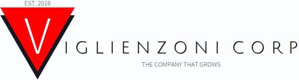 Viglienzoni Corporation Logo Design