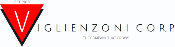 Viglienzoni Corporation Logo Design