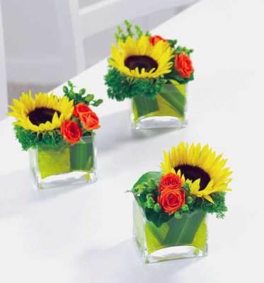"4 x 4"" Cube Vase"