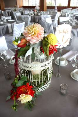 Bird Cage Florals