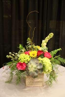 Florals & Succulents