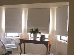 northam roman blinds