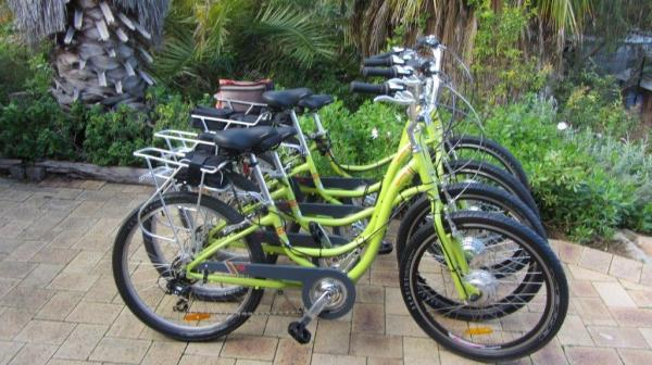 ABOUT THE BIKES