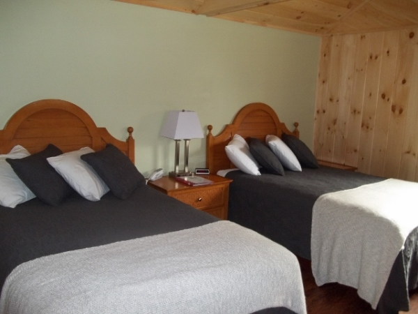 Pet Friendly Room with Two Double Beds