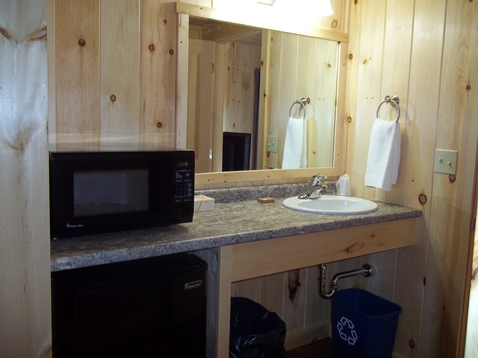 Fridge, Microwave and Sink area of Suite