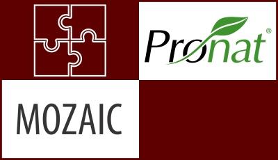 PRONAT - MOZAIC