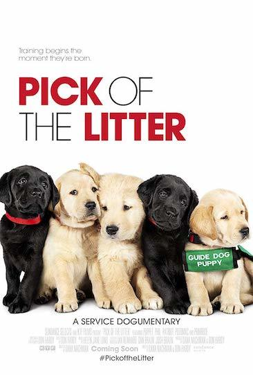 One Movie Punch - Episode 410 - Pick of the Litter (2018)