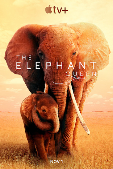Episode 637 - The Elephant Queen (2019)