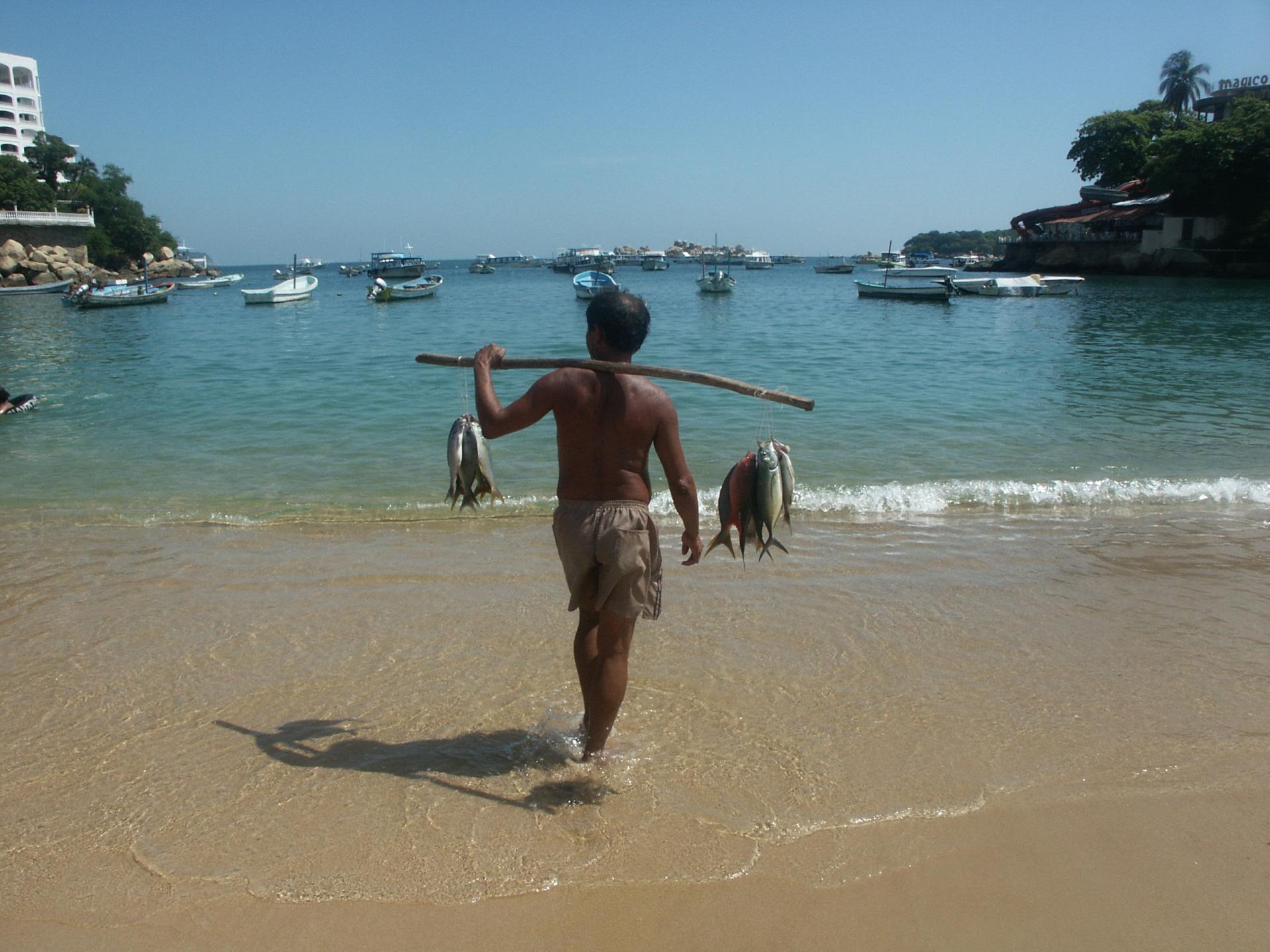 Pescador Playa Caleta Hotel Acamar