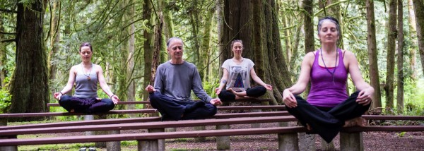 Yoga Festival at Porpoise Bay Park